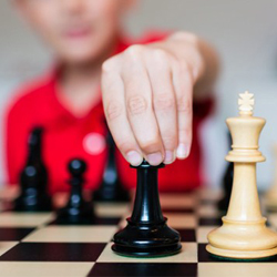 Теория и методика преподавания предмета «Шахматы» в образовательных учреждениях в рамках ФГОС
